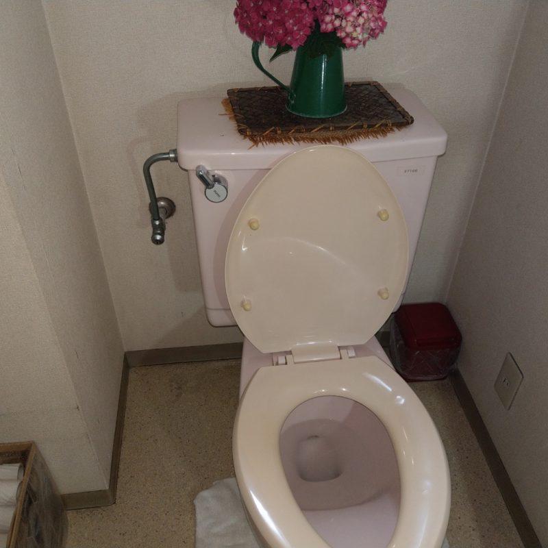 トイレの床に水が漏れる(トイレ水漏れ修理)の依頼 大阪府大阪市鶴見区安田