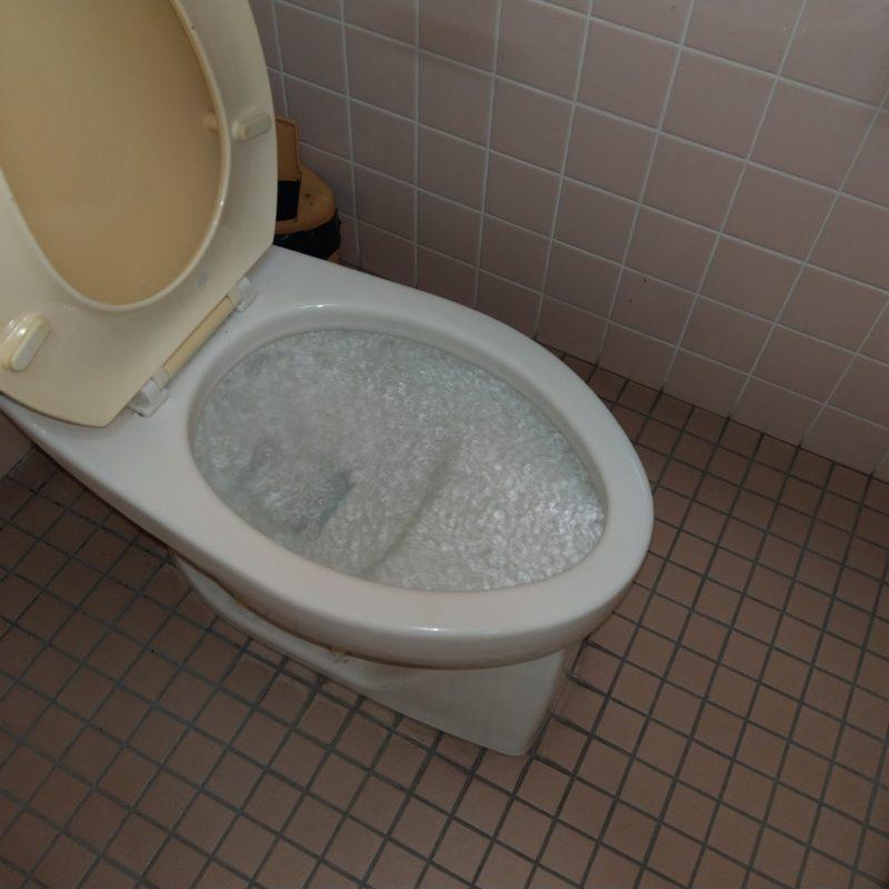 【トイレ排水詰まり】大阪府大阪市東淀川区店舗様からの依頼